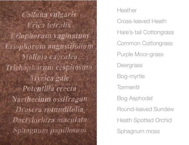 Caroline Dear plant list peat timespan